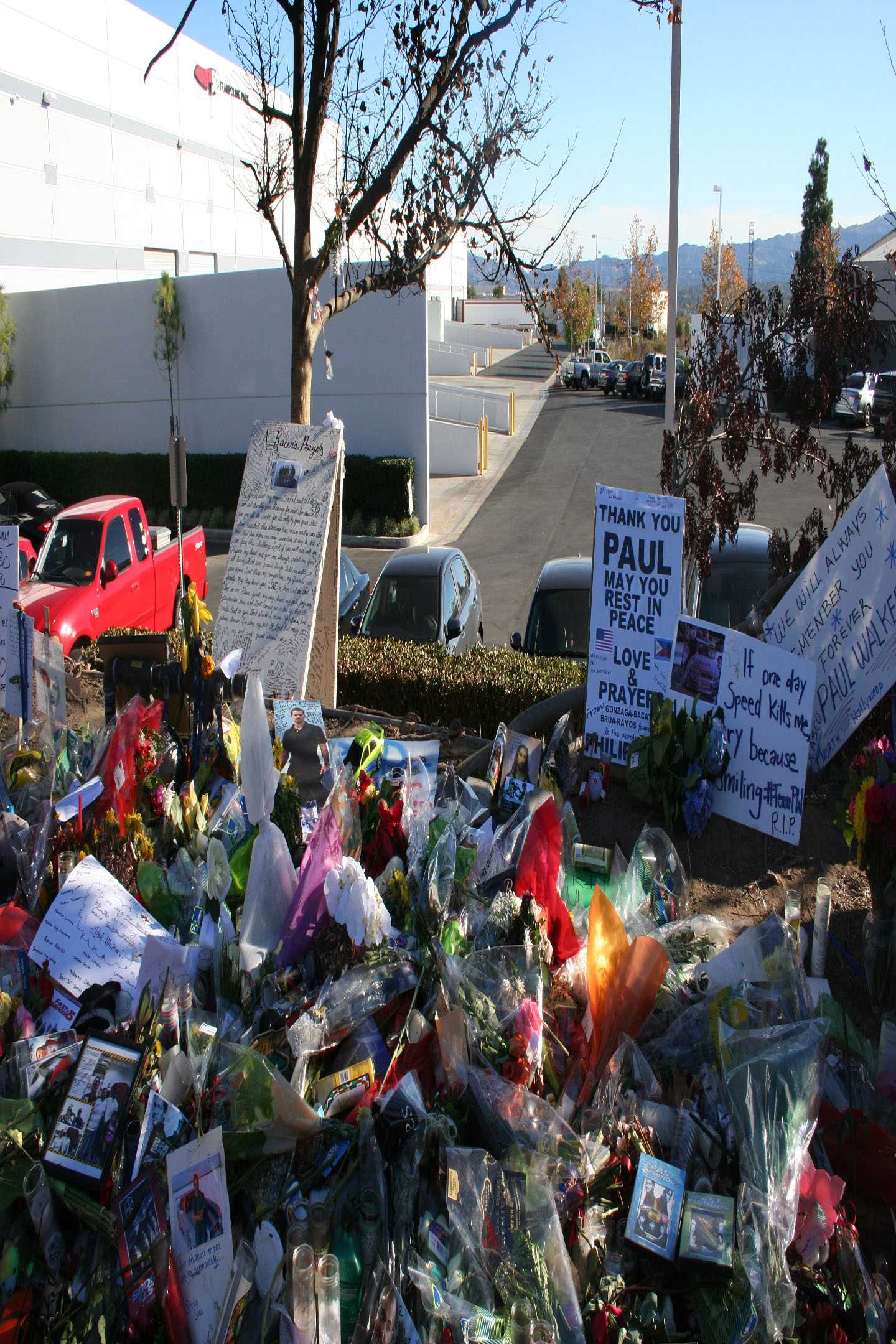 ... following Paul Walker's death? : Celebrities, News - India Today