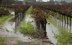 Flash floods: What does this mean for the drought?