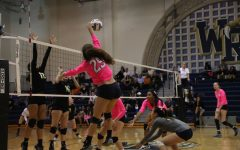 Claw Out Cancer Volleyball Game