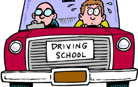 Teens' Guide to Getting Their Driver's License