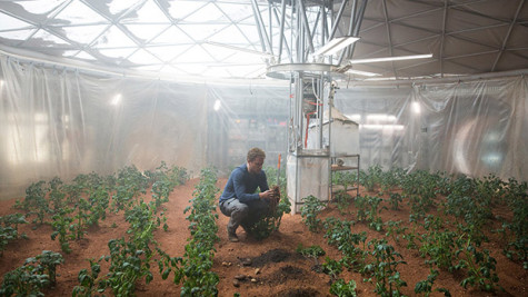 Watney growing his Martian potatoes