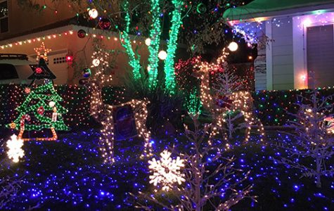 Wakefield Winter Wonderland and LA Zoo Lights