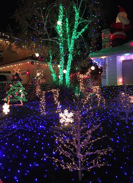 Wakefield Winter Wonderland and LA Zoo Lights