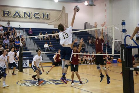 Boys' Volleyball Falls to Alemany