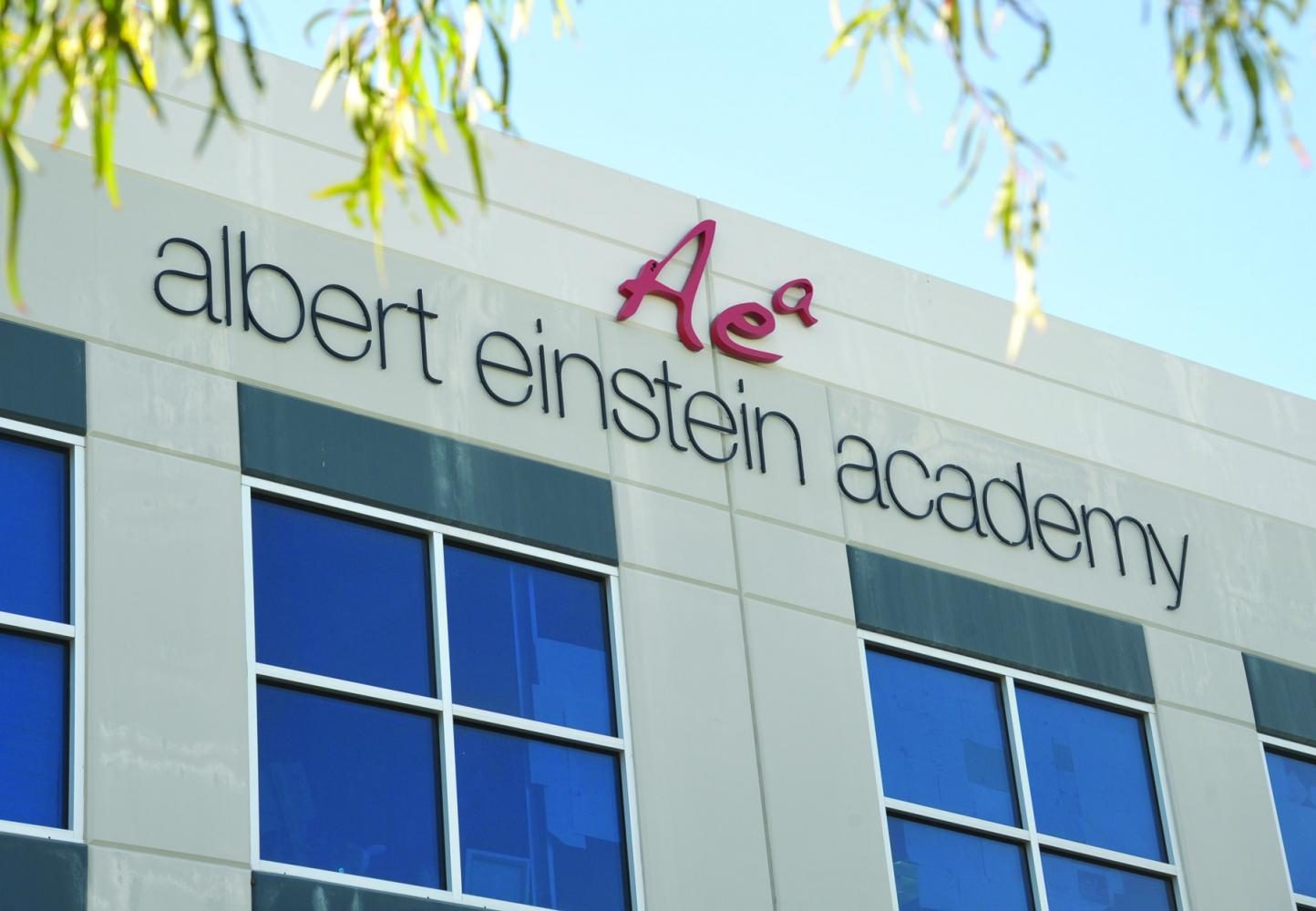 Albert Einstein Academy: Rockets to Wildcats