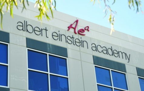 Albert Einstein Academy: Rockets to Wildcats