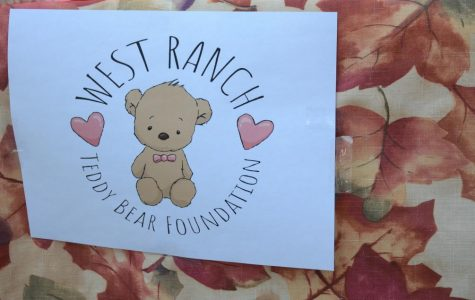 The Teddy Bear Foundation
