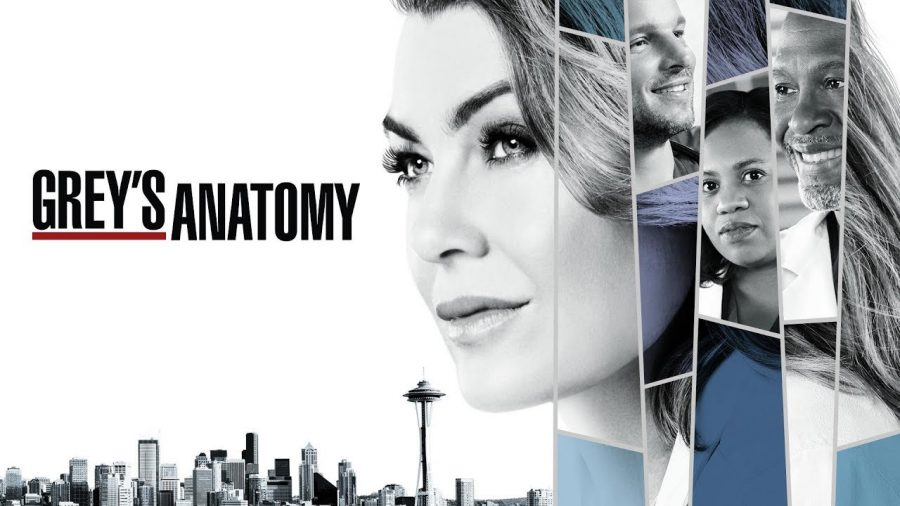 Greys Anatomy Review