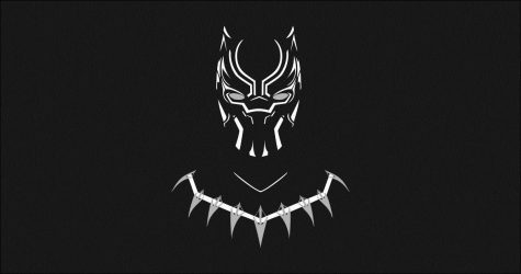 The Importance of Black Panther