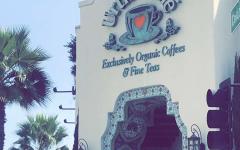 Urth Caffé: Pasadena