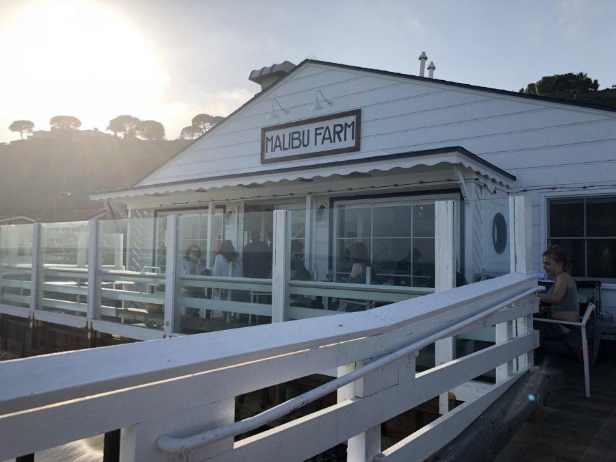 Malibu Farm: An Oceanside Gem