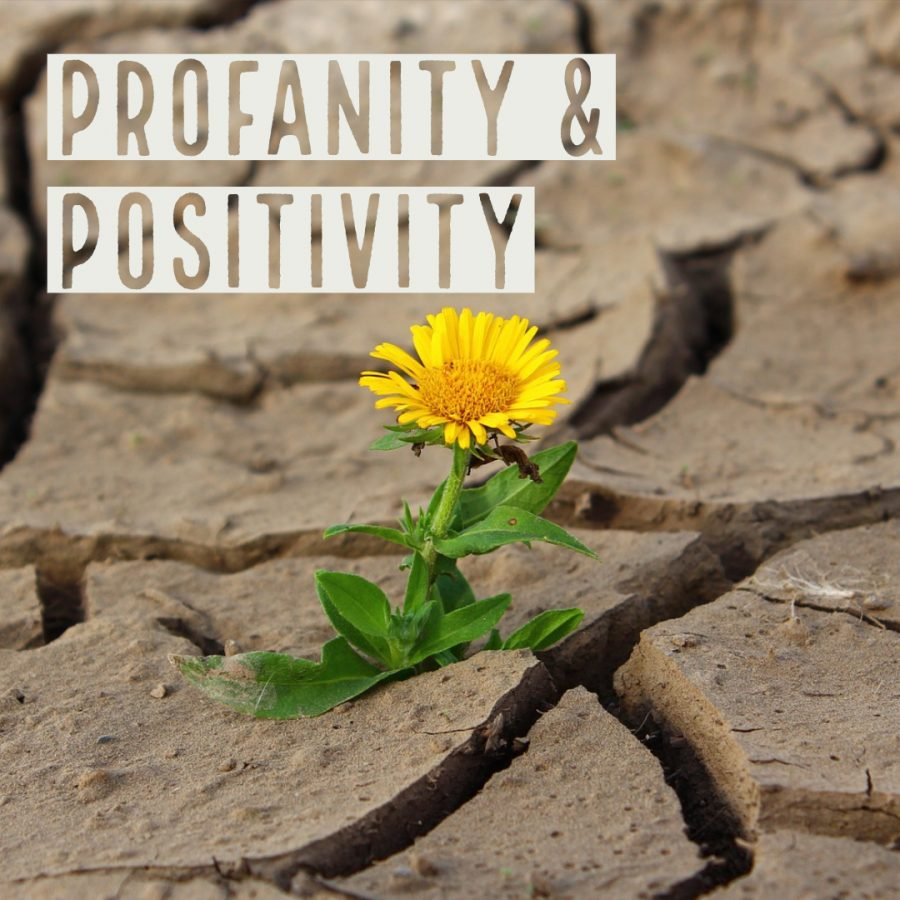 Profanity+and+Positivity