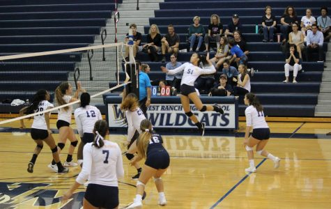Wildcats Sweep Grizzlies in Second League Game