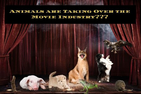Movie Mania: Animals are taking over the Movie Industry