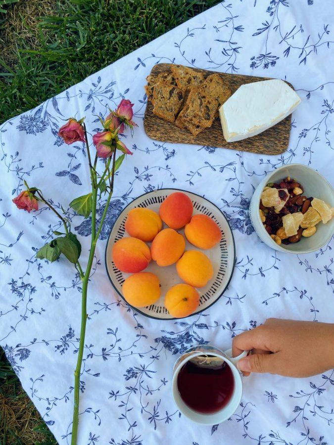 Backyard+Tea+Party+Picnic