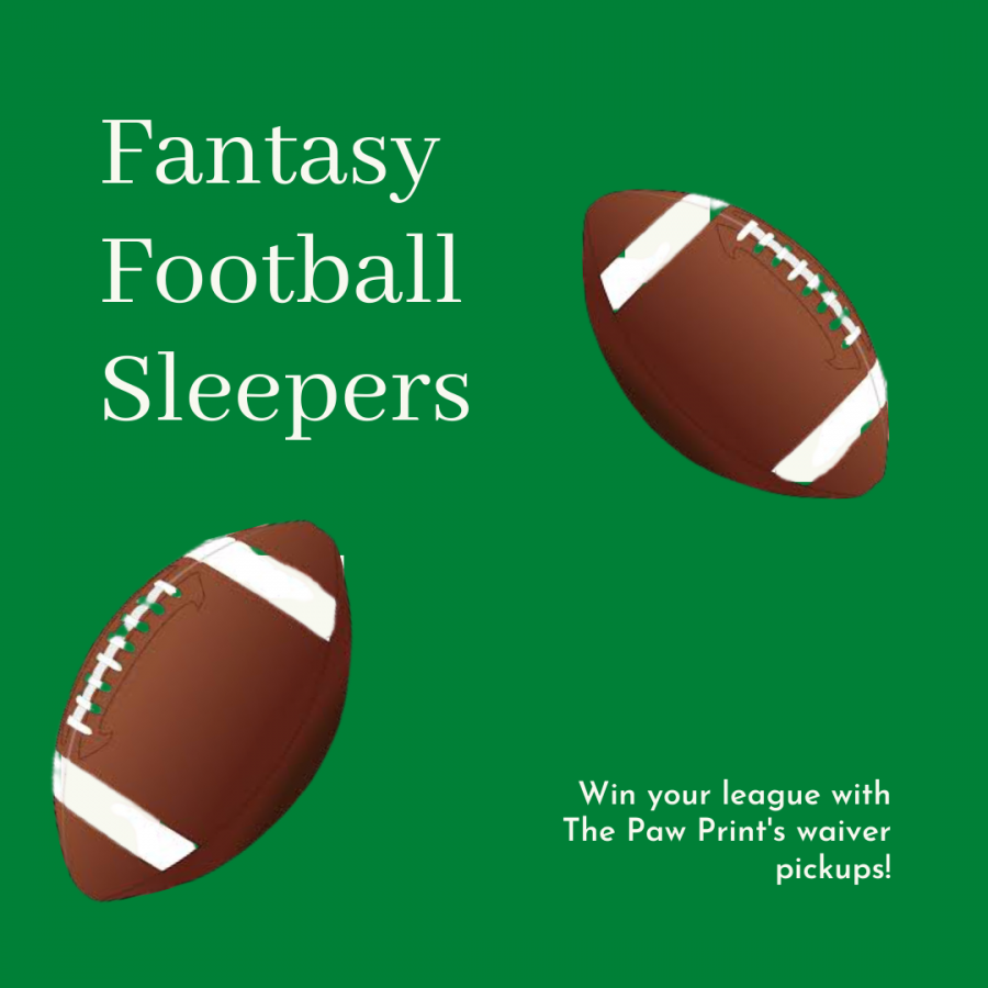 The Paw Print picks 2020 fantasy football sleepers