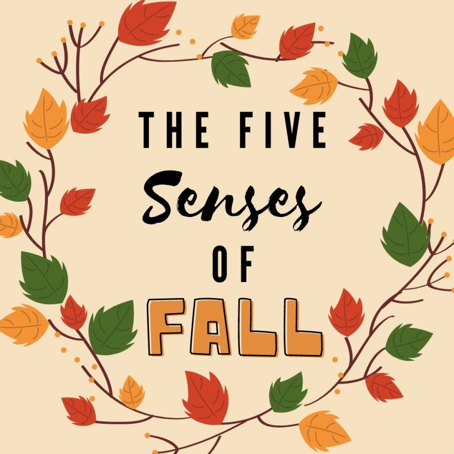 The Five Senses of Fall