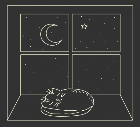The Essentiality of Sleep