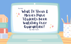 Survey: What TV shows and movies have students been watching over quarantine?