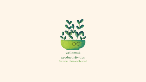 Wellness/Productivity Tips for 2021